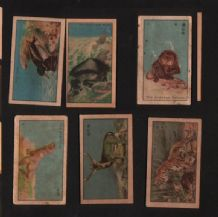 SIAM old Thailand cigarette cards tobacco inserts #947